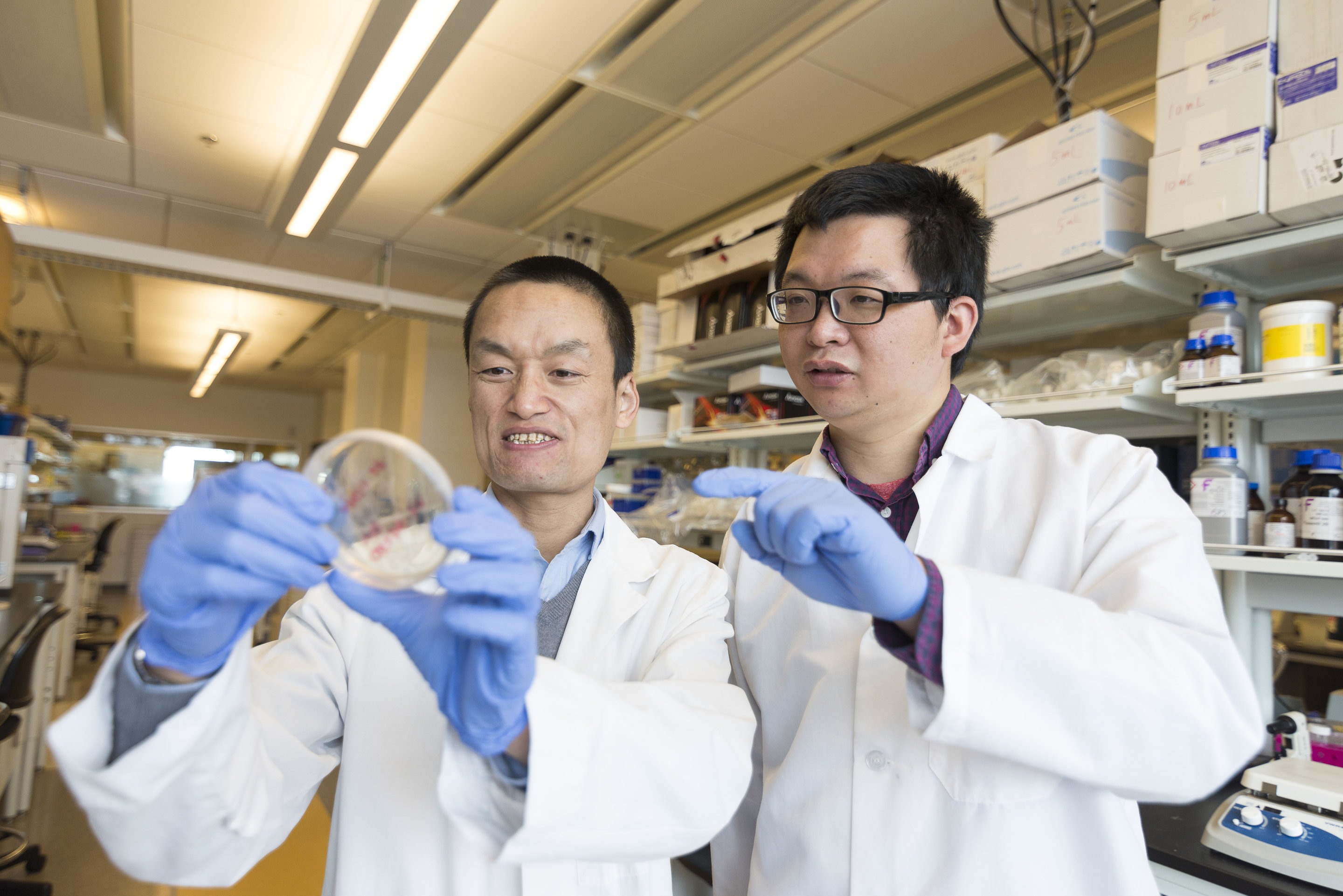 Study findings show promise in preventing heart disease in cancer survivors
