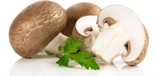 Irradiated mushrooms mushrooms have 30 Times higher levels of Vitamin D: Are these mushrooms still healthy?