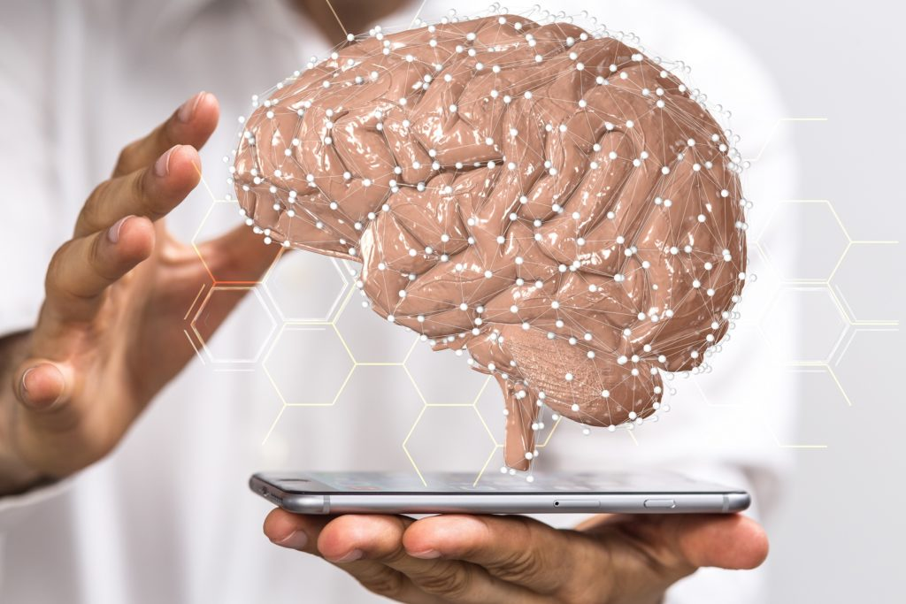 Brain research: researchers have deciphered the riddle to our intelligence