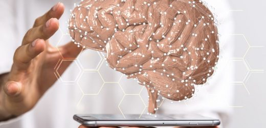 Research: the mystery of intelligence could now be decrypted