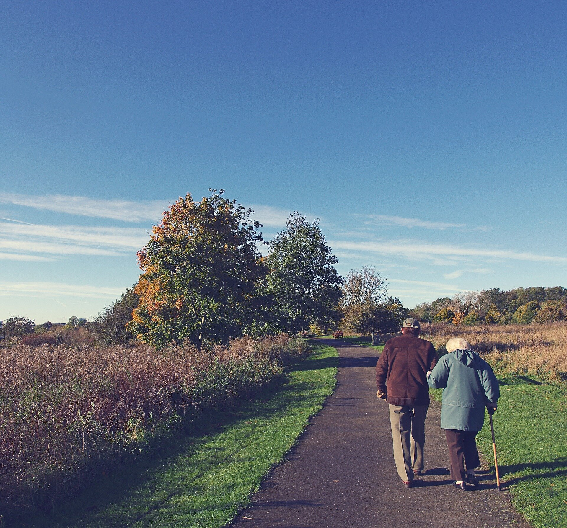 Improved access to greenspace for older adults needs to be considered