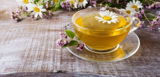 Boost immunity with chamomile-infused drinks; other health benefits of this antioxidant-rich herb