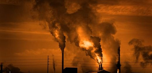 Children born to mothers in polluted areas 'have LOWER IQs'