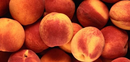 Healthy, delicious cooking with summer's peaches, plums
