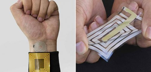 Scientists create an electronic sticker that monitors pulse and muscle