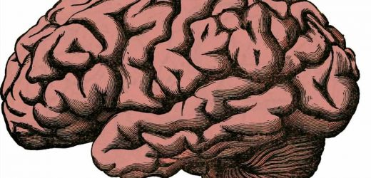 Researcher decodes the brain to help patients with mental illnesses