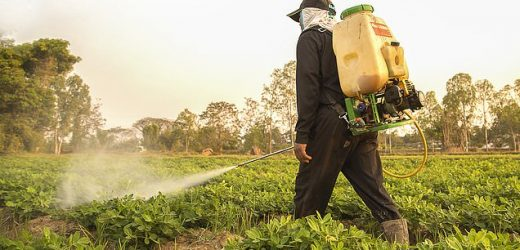 Five French cities BAN synthetic pesticides amid anti-chem movement