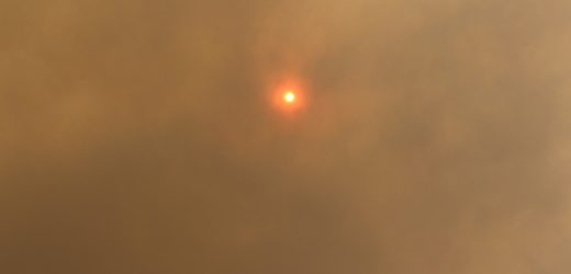 From face masks to air purifiers: What actually protects from bushfire smoke?