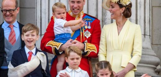 One of Prince Louis's First Words Was Inspired By Popular TV Show