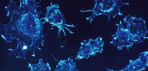 Dozens of non-oncology drugs can kill cancer cells