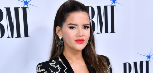 Maren Morris Gives 3rd 'Trimester Hormone Update' During 1st Pregnancy