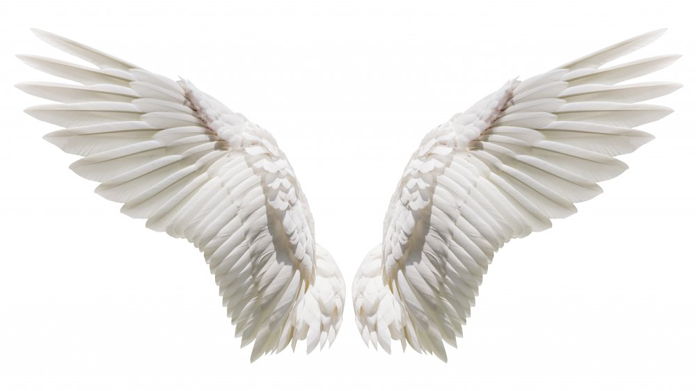 The truth about angel numbers