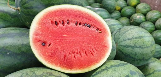 What happens to your body when you eat too much watermelon