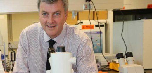 Scientists seek novel material to kill COVID-19