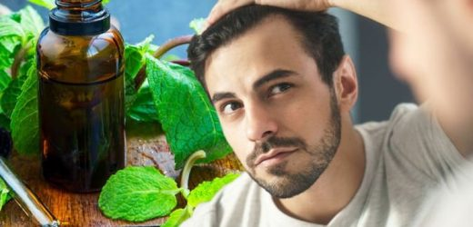 Hair loss treatment: The herbal oil shown to increase numbers of hairs and follicle depth