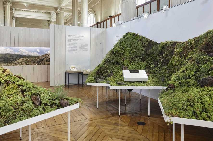Chanel Hosts Botanical Exhibition in Paris