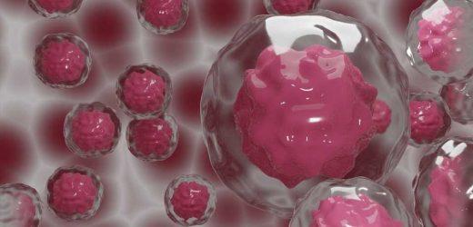 Big data analysis finds cancer's key vulnerabilities