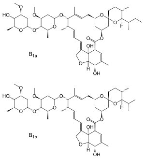 New therapeutic approaches for SARS-CoV-2