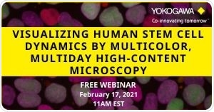 Webinar: High-Content Imaging on Human Pluripotent Stem Cell Research