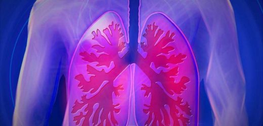 Lung cancer cells have differential signaling responses to KRAS inhibitor treatment