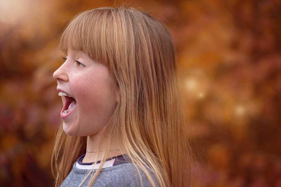 Human screams communicate at least six emotions