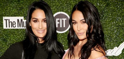 PDA! Screen Time! Nikki and Brie Bella Share Parenting Dos and Don'ts