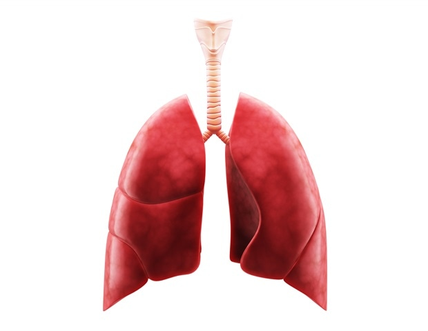 New atomic-level model helps explain how SARS-CoV-2 causes extensive lung damage
