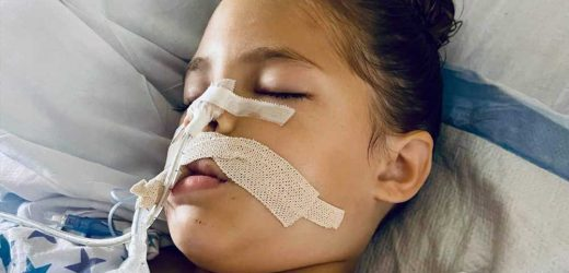 Snake Bite Lands 5-Year-Old in the Hospital, and Now Mom is Warning Other Parents