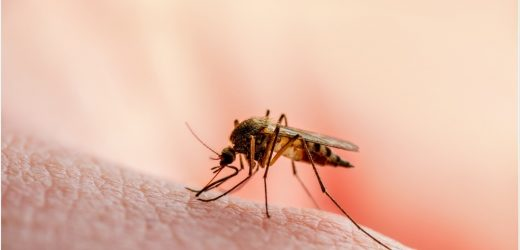 New malaria vaccine is undergoing Phase 1 trials but current results show it provides strong and long-lasting protection