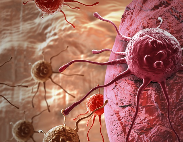 Two-arm molecule can deplete cancer-protecting cells to promote immune responses against tumors