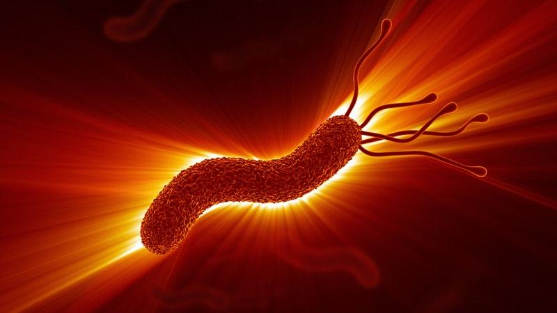 Stool Tests Rapidly Predict H pylori Antibiotic Resistance